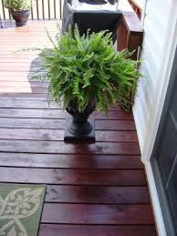 Porch Planter Ideas by 47 Best Front Porch Planter Container Ideas Images On Pinterest