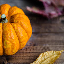 samhain traditions
