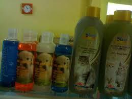 Sho Kucing Anti Jamur zafran petshop distributor makanan dan kebutuhan kucing kesayangan