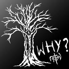 the hugely popular why tree design now available as a window sticker