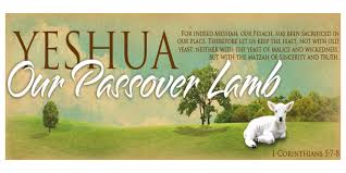 messianic seder haggadah a focused passover seder heart of wisdom homeschool