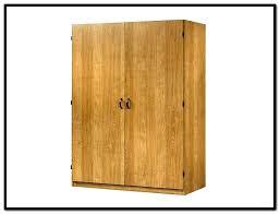 sauder homeplus basic storage cabinet dakota oak sauder homeplus storage cabinet amazing storage cabinet white