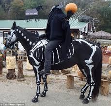 Raven Halloween Costume Costume Straight Horse U0027s Heart
