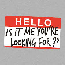 Hello Is It Me You Re Looking For Meme - hello is it me you re looking for t shirt snorgtees