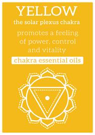 solar plexus aromatherapy detox u0026 fitness holidays in thailand