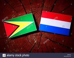Guyana Flag Dutch Guyana Stock Photos U0026 Dutch Guyana Stock Images Alamy