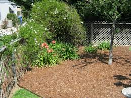 Cheap Landscaping Ideas For Backyard by Simple Backyard Garden Fabulous Chic Simple Garden Ideas For