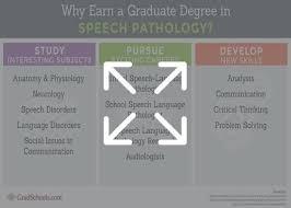 Masters Degree In Anatomy And Physiology Speech Language Pathology Programs Online Graduate Slp Programs