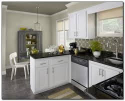 Painted Kitchen Cabinet Colors Kitchen Cabinets Color Popular Painted Kitchen Cabinets For Custom