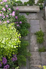 88 best gardens with winter interest images on pinterest winter
