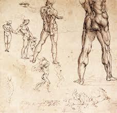 anatomical drawing eve u0027s art