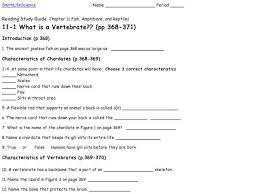 vertebrates worksheet free worksheets library download and print