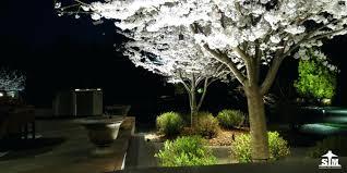 Cost Of Landscape Lighting Landscaping Lights Low Voltage Best Landscape Lighting