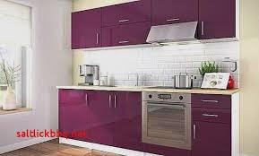 deco cuisine violet best of meuble cuisine violet pour idees de deco de cuisine idée