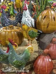 lovely autumn plant shopping trip to our roseville garden center