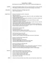 Sample Research Assistant Resume by Veterinary Technician Resume Sample Haadyaooverbayresort Com