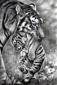 the 25 best animal drawings ideas on pinterest awesome drawings