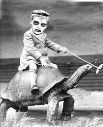 I Like Turtles Meme - image 75 i like turtles know your meme