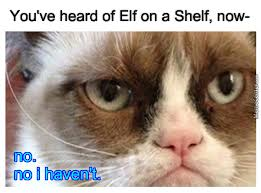 Elf On The Shelf Meme - what what in the butt never heard of an elf on a shelf by