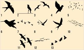 black birds tattoos design