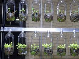 Bottle Garden Ideas 44 Awesome Indoor Garden And Planters Ideas Butterbin