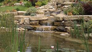 rock garden designs decor references