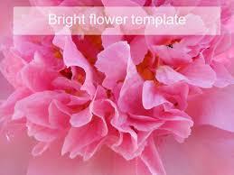bright flower powerpoint template