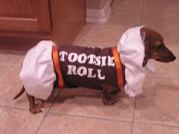 Tootsie Roll Halloween Costume 31 Hilarious Halloween Costumes Dogs