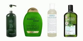 Tea Tree Oil Bathroom Cleaner 9 Best Tea Tree Shampoos For Cleaner Hair In 2017 Soothing Tea