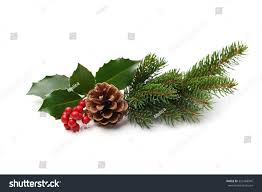 christmas decoration holly berry pine cone stock photo 329168945