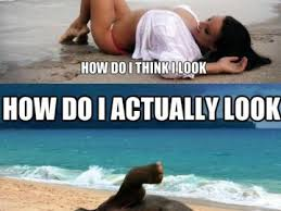 Beach Body Meme - memeologist com the memeologist has collected the funniest and