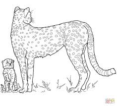 j coloring pages download coloring pages cheetah coloring pages cheetah coloring
