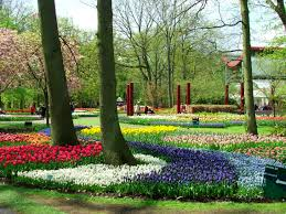 the netherlands europe parks full of flowers
