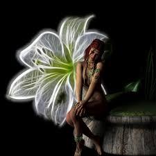 fantasy fairy luminous flower free stock photo public domain