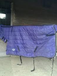 Weatherbeeta Combo Stable Rug Weatherbeeta Stable Rug Ads Buy U0026 Sell Used Find Great Prices