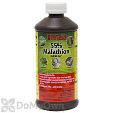 Insecticide For Vegetable Garden by Malathion Insecticide Spray Hi Yield 55 Malathion Insect Spray