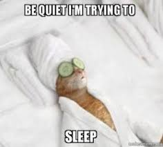 Be Quiet Meme - be quiet i m trying to sleep pered cat meme make a meme