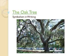 tree symbolism the oak tree symbolism in writing ppt video online download