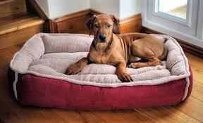 Burrowing Dog Bed Top 7 Best Serta Dog Bed Reviews Your Perfect Match 2017