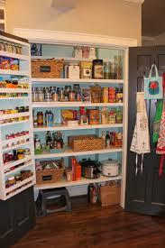 kitchen pantry doors ideas furniture 20 mesmerizing images pantry shelving plans modern