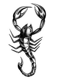 black and grey scorpion tattoo design