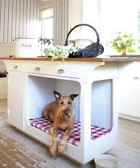 pet room ideas cool dog beds idea 8 coolest beds creative pet bed ideas govegan me