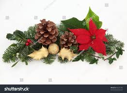 Mistletoe Decoration Christmas Decoration Red Poinsettia Flower Mistletoe Stock Photo