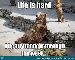 Meme Puns - bear puns bear puns by thedarksorceress meme center