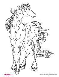 coloriages pour fille le cheval