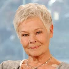 how to get judi dench hairstyle judi dench actress biography