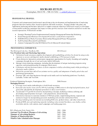 marketing resume sle vice president marketing resume and sle sales pdf