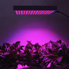 Grow Lights For Indoor Plants Canada by Amazon Com Erligpowht 45w Led Red Blue Hanging Light For Indoor