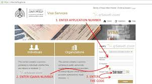 how to check visa status online permanent family visa or visit