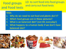 food groups and food tests lo to sort food into food groups and